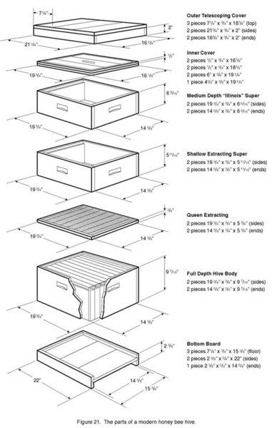 Parts-std-hive2.jpg